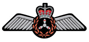 The Canadian Military Flight Engineers Association (CMFEA)